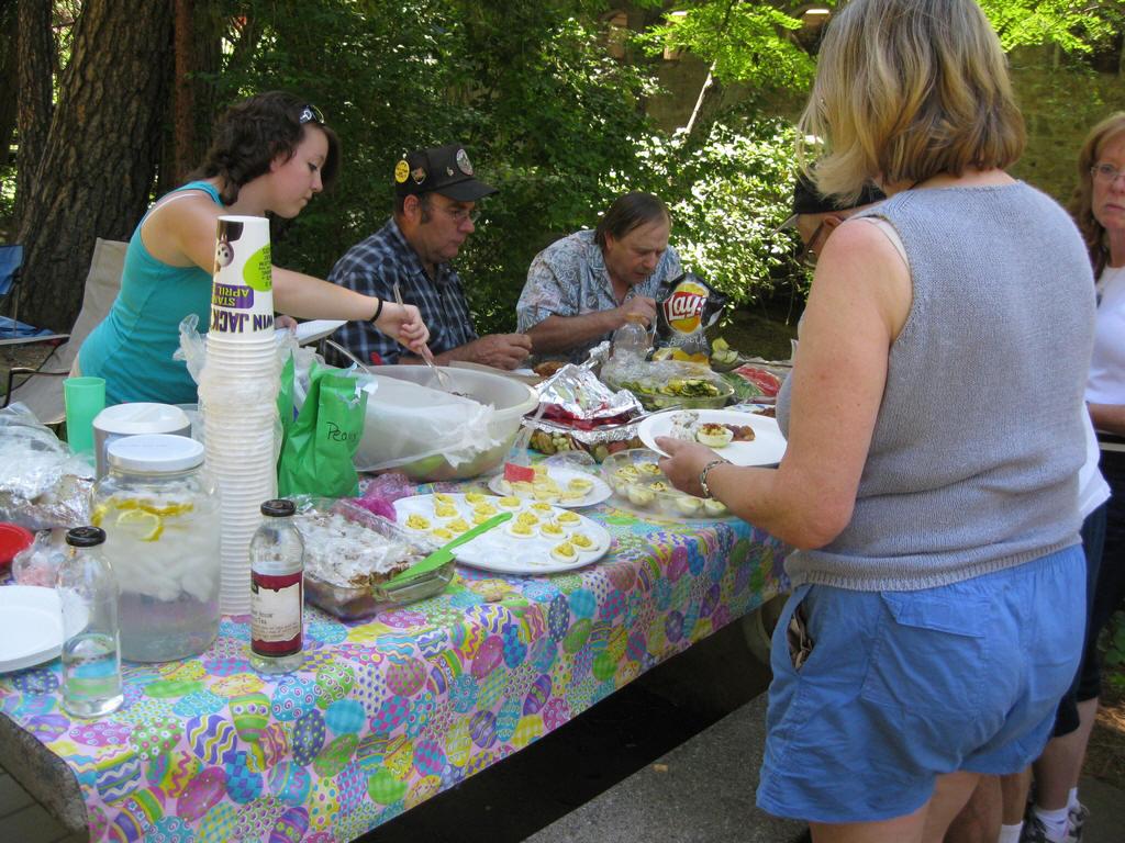 03_2010_picnic