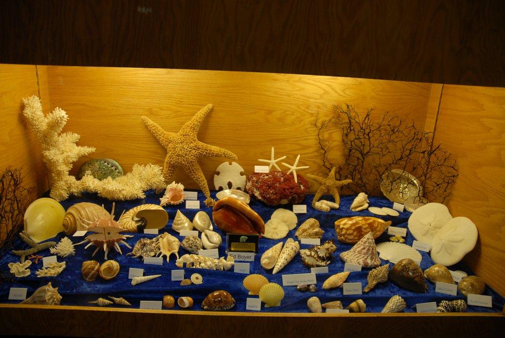 exhibits_2011k